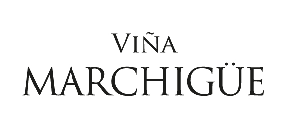 Marchigue wines